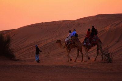 medioriente-deserto